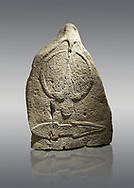 Late European Neolithic prehistoric Menhir standing stone with carvings on its face side. The representation of a stylalised male figure starts at the top with a long nose from which 2 eyebrows arch around the top of the stone. below this is a carving of a falling figure with head at the bottom and 2 curved arms encircling a body above. at the bottom is a carving of a dagger running horizontally across the menhir.  From Barrili I site, Laconi. Menhir Museum, Museo della Statuaria Prehistorica in Sardegna, Museum of Prehoistoric Sardinian Statues, Palazzo Aymerich, Laconi, Sardinia, Italy. Grey background. .<br /> <br /> Visit our PREHISTORIC PLACES PHOTO COLLECTIONS for more photos to download or buy as prints https://funkystock.photoshelter.com/gallery-collection/Prehistoric-Neolithic-Sites-Art-Artefacts-Pictures-Photos/C0000tfxw63zrUT4