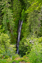 Falls View Falls, Olympic National Forest, Washington, US