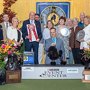 Poodle Club of America-Toys 2019