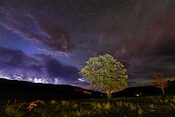 Tree, lightning storm and stars above Vermejo River and Casa Grande, Vermejo Park Ranch, New Mexico, USA.