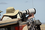 Tanzania, Serengeti National Park, Nature tourists photographing wildlife