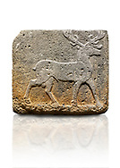 Hittite monumental relief sculpted orthostat stone panel from Water Gate Basalt, Karkamıs, (Kargamıs), Carchemish (Karkemish). 900-700 BC . Stag. Anatolian Civilisations Museum, Ankara, Turkey. With his large and many branched antler, he walks towards the right. <br /> <br /> On a white background. .<br />  <br /> If you prefer to buy from our ALAMY STOCK LIBRARY page at https://www.alamy.com/portfolio/paul-williams-funkystock/hittite-art-antiquities.html  - Type  Karkamıs in LOWER SEARCH WITHIN GALLERY box. Refine search by adding background colour, place, museum etc.<br /> <br /> Visit our HITTITE PHOTO COLLECTIONS for more photos to download or buy as wall art prints https://funkystock.photoshelter.com/gallery-collection/The-Hittites-Art-Artefacts-Antiquities-Historic-Sites-Pictures-Images-of/C0000NUBSMhSc3Oo