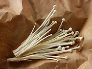Fresh picked cultivated Enokitake, Enokidake or Enoki (Flammulina velutipes) commonly known as golden needle mushroom or lily mushroom, an edible mushroom.