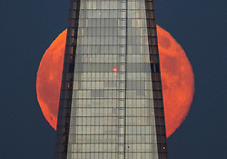 © Licensed to London News Pictures. 28/06/2018. London, UK. A spectacular full moon known as a strawberry moon rises behind the Shard skyscraper after another hot summer day in the capital. Photo credit: Peter Macdiarmid/LNP