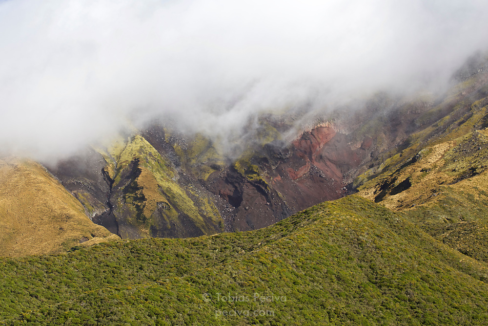 Colorful terrain under low cloud cover on the slopes of Mount Taranaki, in Egmont National Park, New Zealand.