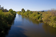 The Los Angeles River in the Sepulveda Basin Wildlife Area is one of only three unpaved sections of the River. San Fernando Valley, California, USA