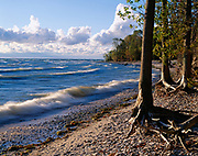 Shore of Lake Erie showing breaking waves and eroded beach exposing tree roots, Kelleys Island, Ohio.