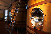 Wooden fermentation tanks Bodega Bouza Winery, Canelones, Montevideo, Uruguay, South America