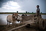 A little boy sits on a wooden cart in coutryside of Kontum plateau, Pleiku area, Vietnam, Asia. He belongs to Reungao ethnic tribe.