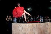 Grey Goose Winter Ball to Benefit the Elton John AIDS Foundation. Battersea park. London. 29 October 2011. <br /> <br />  , -DO NOT ARCHIVE-© Copyright Photograph by Dafydd Jones. 248 Clapham Rd. London SW9 0PZ. Tel 0207 820 0771. www.dafjones.com.