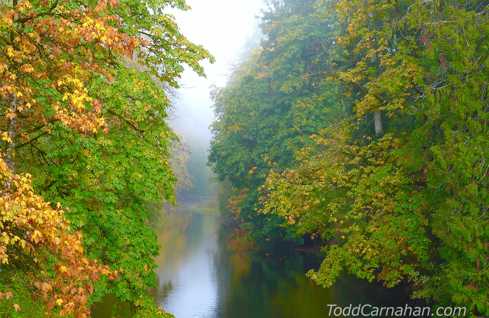 koksilah fall river