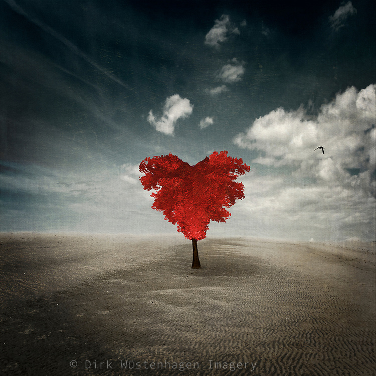 Heart shaped tree with bright red foliage in the middle of nowhere - photo manipulation