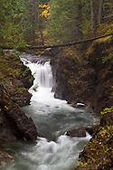 The Lower Little Qualicum Falls in Little Qualicum Falls Provincial Park on Vancouver Island, British Columbia, Canada