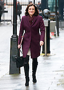 © Licensed to London News Pictures. 18/11/2014. Westminster, UK . Theresa Villiers,Conservative MP, Secretary of State for Northern Ireland . Ministers and MP's on Downing Street 18th November 2014. Photo credit : Stephen Simpson/LNP