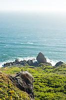 Young man hiking near the California Coastal Trail; Golden Gate National Recreation Area. San Francisco,  CA