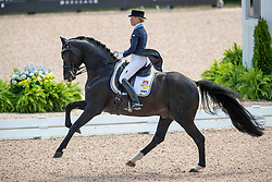 Nilshagen Therese, SWE, Dante Weltino Old<br /> World Equestrian Games - Tryon 2018<br /> © Hippo Foto - Dirk Caremans<br /> 13/09/18