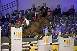 Duguet Romain, SUI, Twentytwo Des Biches<br /> Indoor Brabant - Den Bosch 2017<br /> © Dirk Caremans