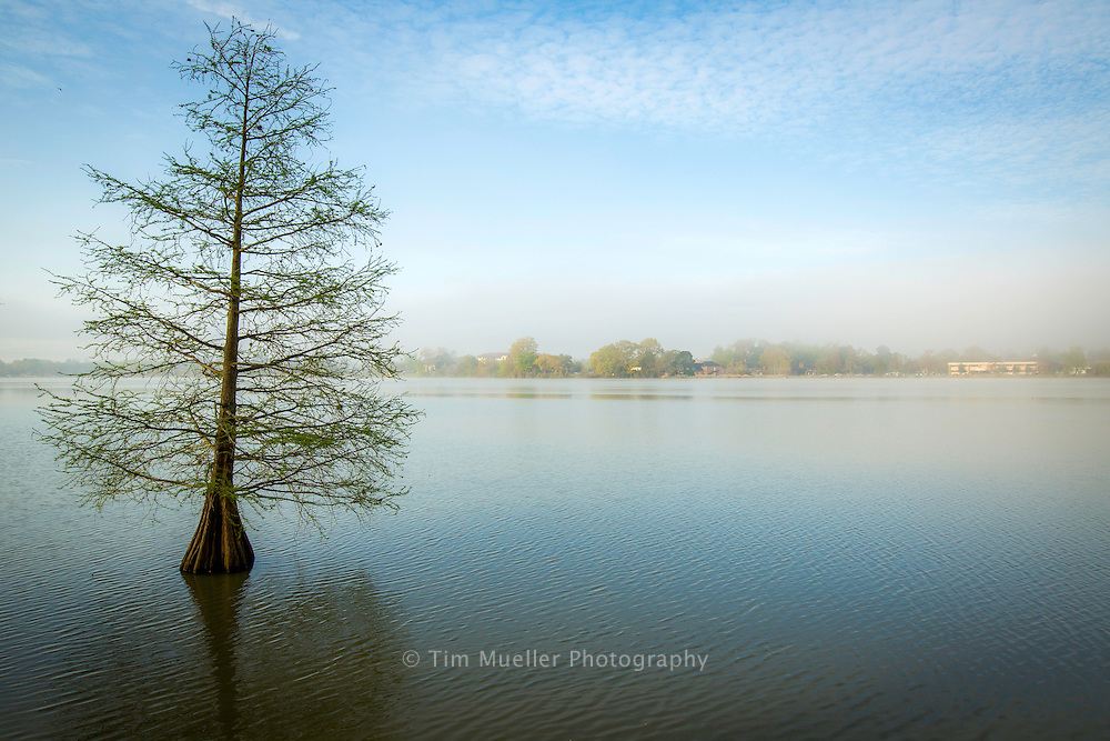 LSU lakes near the LSU campus in Baton Rouge, La.