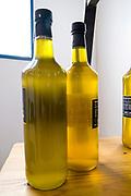 Bottles of freshly pressed virgin olive oil