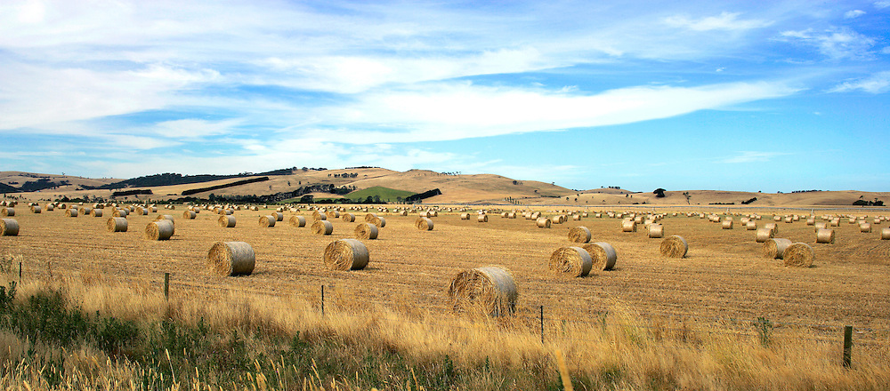 Hay bales, rural Victoria.<br /> <br /> Larger JPEG + TIFF images available by contacting use through our contact page at : www.effectiveworkingimage.com