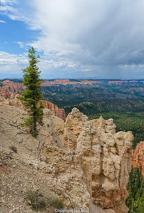 Bryce Canyon National Park, Utah, USA.