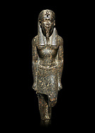 Ancient Egyptian statue of a Ptolomaic king in pharaonic regalia, granodiorire, Ptolemaic Period (332-30BC). Egyptian Museum, Turin. black background<br /> <br /> The Ptolomaic king is dressed a a pharaoh wearing a nemes headdress and a false beard . Drovetti Collection, Cat 1384 .<br /> <br /> If you prefer to buy from our ALAMY PHOTO LIBRARY  Collection visit : https://www.alamy.com/portfolio/paul-williams-funkystock/ancient-egyptian-art-artefacts.html  . Type -   Turin   - into the LOWER SEARCH WITHIN GALLERY box. Refine search by adding background colour, subject etc<br /> <br /> Visit our ANCIENT WORLD PHOTO COLLECTIONS for more photos to download or buy as wall art prints https://funkystock.photoshelter.com/gallery-collection/Ancient-World-Art-Antiquities-Historic-Sites-Pictures-Images-of/C00006u26yqSkDOM