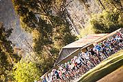 2013 Lake Mountian Bunch