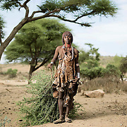 Arille Koya, Lower Omo Valley, Ethiopia.<br /> <br /> Arille has just climbed an acacia tree to cut branches to feed the goats. The rains have failed so far and food on the ground is scarce. The branches are full of small razor sharp thorns.<br /> <br /> Like many daily tasks, this is woman's work in Hamer culture.