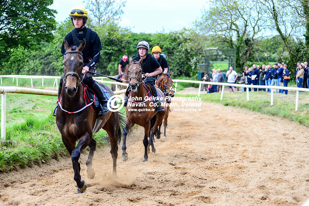 A selection of horses being put through their paces at the  Horse Racing Ireland National Racehorse Trainer Open Morning at John McConnell's yard, Fowlerstown, County Meath.<br /> <br /> Photo: GERRY SHANAHAN-WWW.QUIRKE.IE<br /> <br /> 18-05-2019