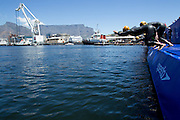 Womens Elite Race starts during the Discovery Triathlon World Cup Cape Town 2017. Image by Greg Beadle