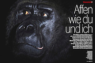Publication: STERN Magazine (Germany), No. 21, 19.05.2011, Photography by Heidi & Hans-Jürgen Koch/heidihanskoch.com; Text by Dr. Horst Güntheroth