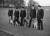1979 - New Garda Dogs On Parade.    (N2).