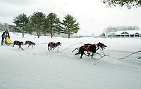 85th annual Laconia World Championship Sled Dog Derby. ©2014 Karen Bobotas Photographer
