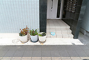 potted plants near the entrance to an apartment building in Japan