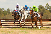 2  April, 2011:  Wazee Moto (left) Gather No Moss (middle) and Music to my Ears (right) jump the last in unison during the DuBose Cup 3 mile timber race. Music to My Ears eventually prevailed over Wazee Moto who finished second and Gather No Moss who finished third.