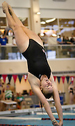 Emma Falley '15 aligns vertical before breaking the surface of the water during the Women's 1m Dive event at the Grinnell College Pioneer Invitational..BEN BREWER/Grinnell College