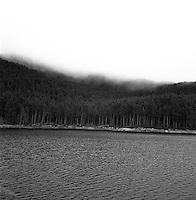 Skog og vann ved Ellingsøy vannverk i Ålesund kommune. I bakgrunnen ser man Myklebusthornet dekt av tåke.<br /> Foto: Svein Ove Ekornesvåg