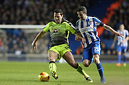 Reading striker Yann Kermorgant (18) and Brighton & Hove Albion winger Jamie Murphy (15) during the EFL Sky Bet Championship match between Brighton and Hove Albion and Reading at the American Express Community Stadium, Brighton and Hove, England on 25 February 2017.