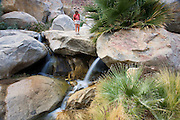 A hiker enjoying a waterfall at the First Palm Oasis, Borrego Palm Canyon, Anza-Borrego Desert State Park, California.  (model released)