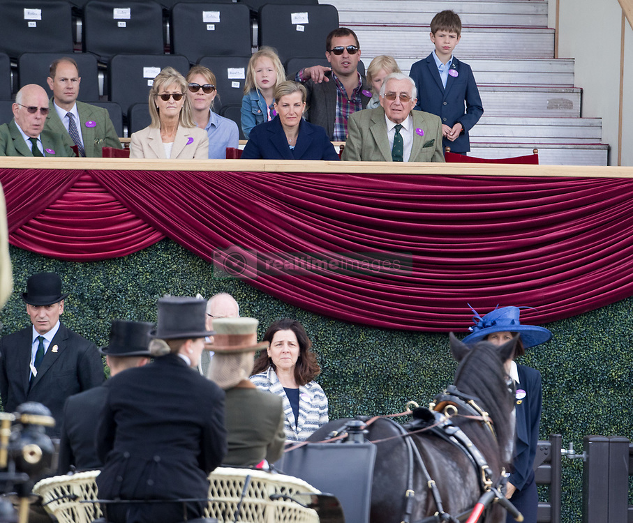 The Earl of Wessex (second left) and The Countess of Wessex (centre) watch their daughter Lady Louise Windsor at the Champagne Laurent-Perrier Meet of the British Driving Society at the Royal Windsor Horse Show, which is held in the grounds of Windsor Castle in Berkshire.