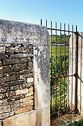 """Vineyard. Grand Montrachet. """"Le Montrachet"""" Grand Cru, Puligny Montrachet, Cote de Beaune, d'Or, Burgundy, France"""