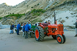 Hastings, Cape Kidnappers, Hawke's Bay, New Zealand