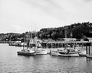 9913-49. Gill net boats Astoria, Oregon, 1952