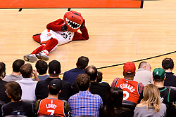 October 19, 2018 - Toronto, Ontario, Canada - Toronto Raptors mascot on the floor  during the Toronto Raptors vs Boston Celtics NBA regular season game at Scotiabank Arena on October 19, 2018 in Toronto, Canada (Toronto Raptors win 113-101) (Credit Image: © Anatoliy Cherkasov/NurPhoto via ZUMA Press)