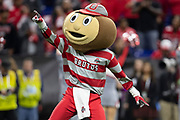 December 01, 2018:  Ohio State mascot during NCAA Football game action between the Northwestern Wildcats and the Ohio State Buckeyes at Lucas Oil Stadium in Indianapolis, Indiana.  Ohio State defeated Northwestern 45-24.