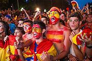 Final match World Cup 2010