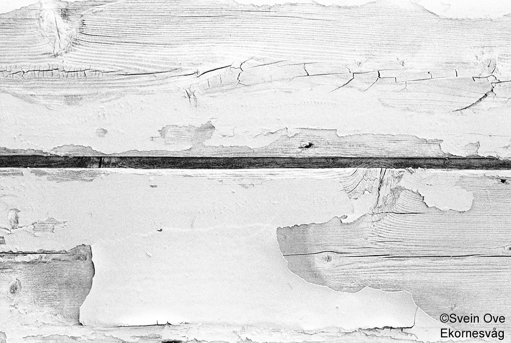 Gammel maling flasser av noen treplanker på en bygning ved sjøen.<br /> Foto: Svein Ove Ekornesvåg