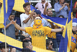 July 8, 2018 - Round Rock, USA - Tigres fans cheer on their team during a Liga MX friendly match between Tigres and Pachuca at Dell Diamond in Round Rock, Texas, on July 8, 2018. (Credit Image: © Scott W. Coleman via ZUMA Wire)