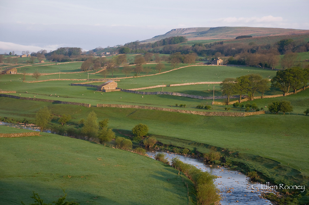 Stone barns, walls and a stream running through fields in the early morning outside Bainbridge, Wensleydale, The Yorkshire Dales National Park, Yorkshire, England