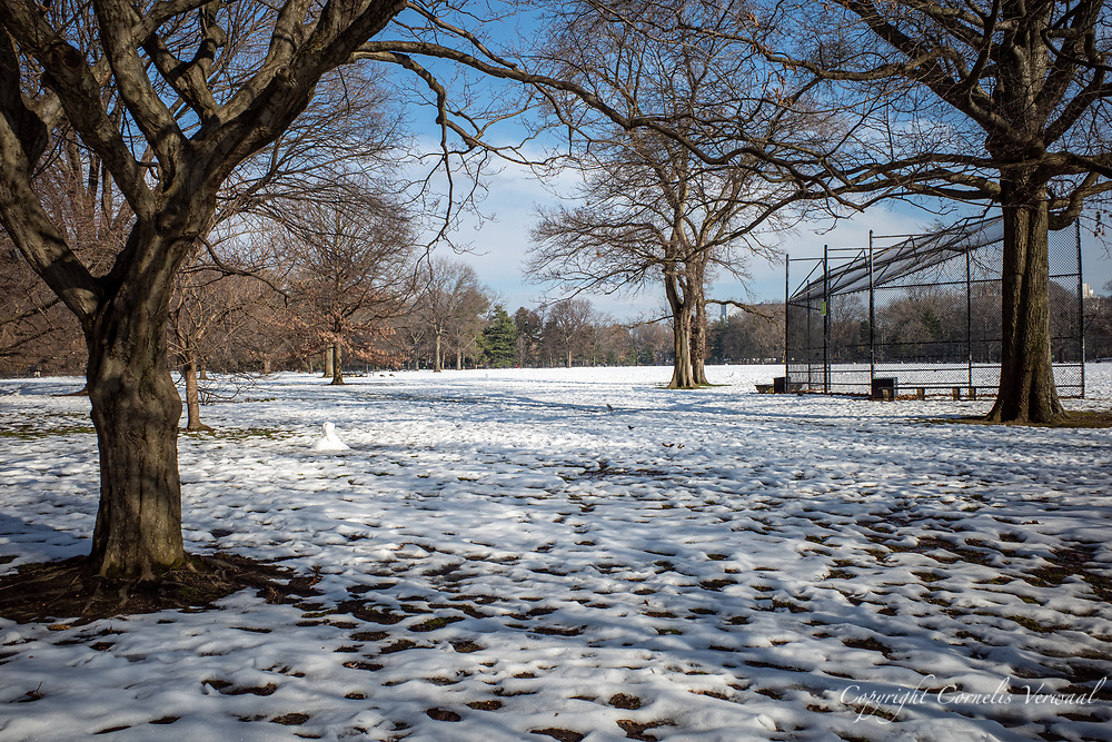 The Great, and still white, Lawn in Central Park, Dec. 22, 2020.